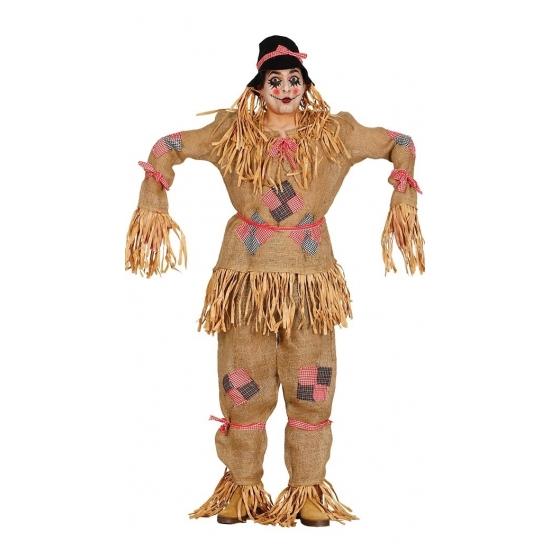 Boerderij thema vogel verschrikker kostuums