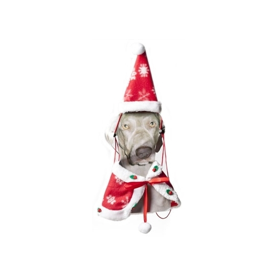 Kerstkleding voor de hond