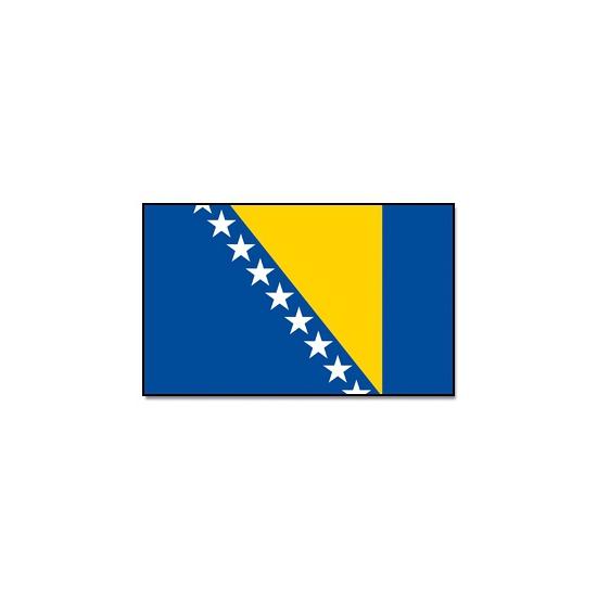 Landenvlag Bosnie en Herzegovina