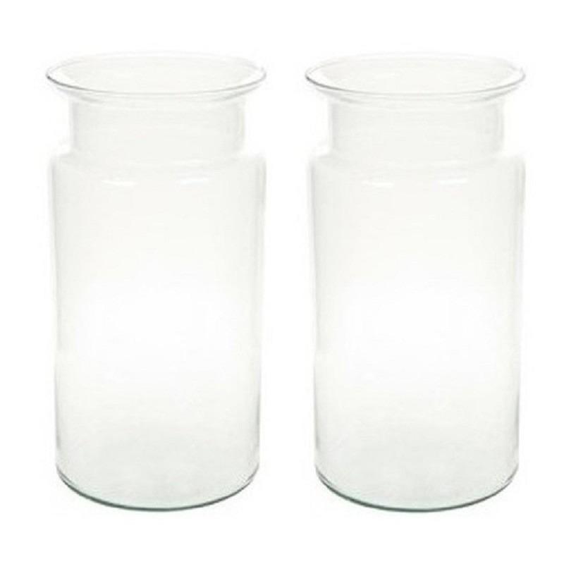 2x Flesvormige vazen glas 30 cm type Bose