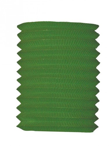 Feestartikelen diversen Geen Groene treklampion 16 cm diameter