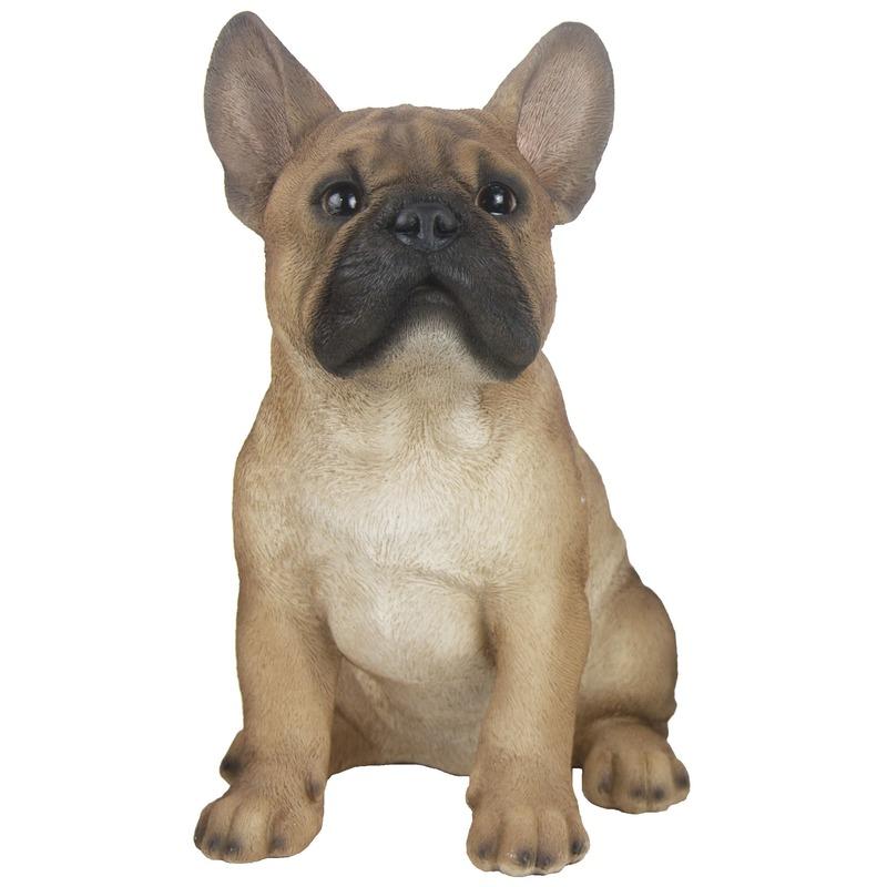 Tuinbeeld Franse Bulldog hond lichtbruin 29 cm