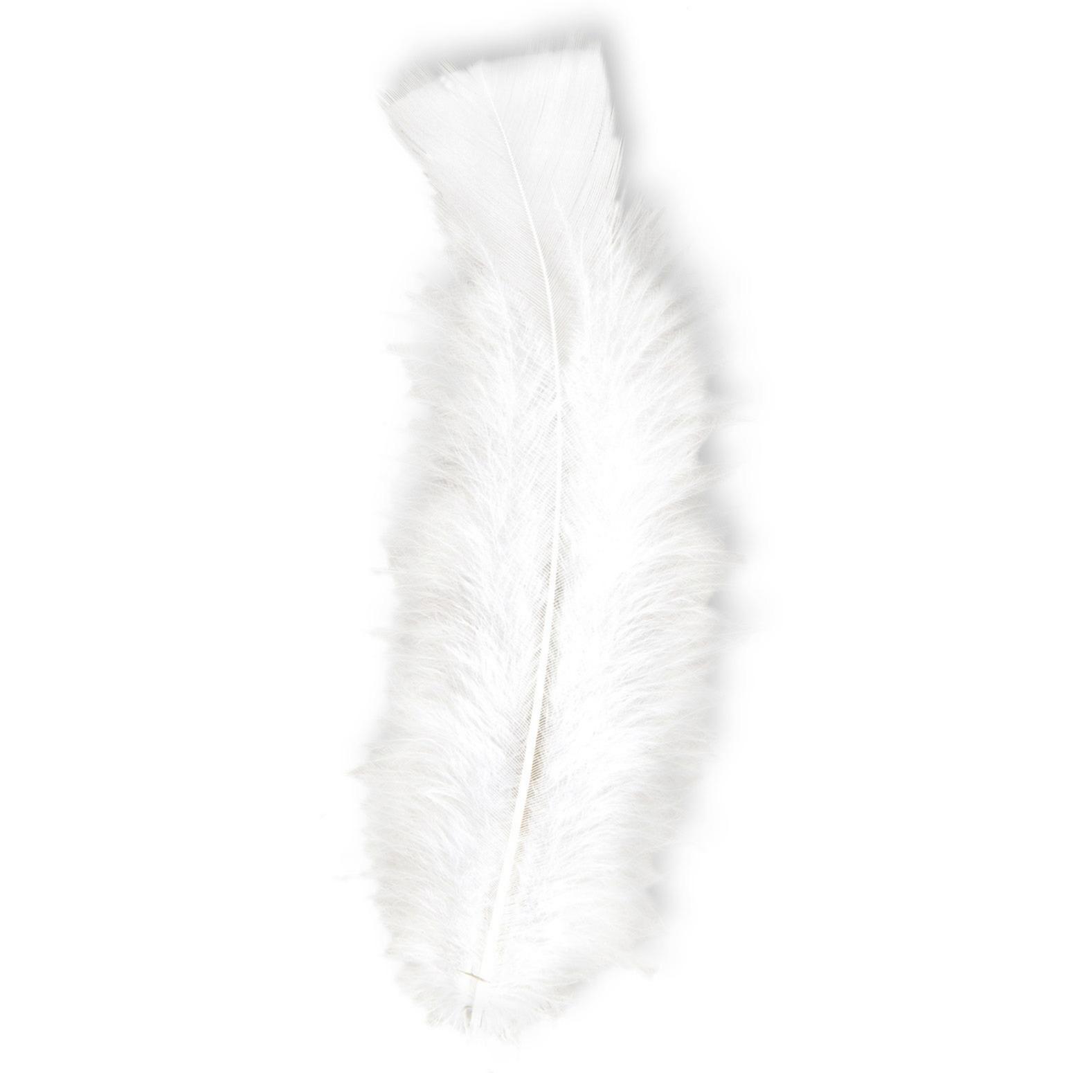 Witte veren voor decoratie