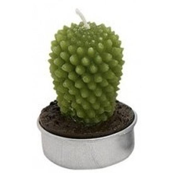 Geen Woondecoratie cactus kaarsje groen type 1 Woonaccessoires