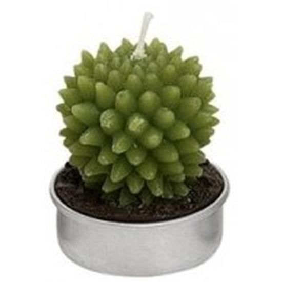 Woondecoratie cactus kaarsje groen type 3 Geen Woonaccessoires